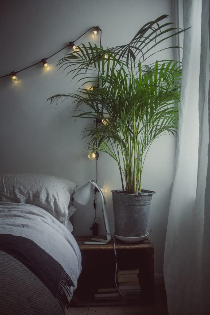 Guest Room Spruce-up