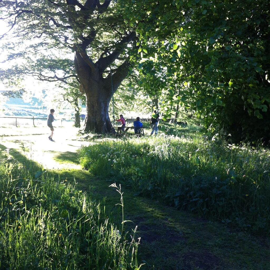 slow living oak