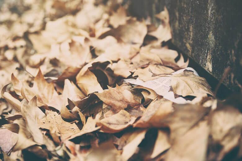 leaves-alternative-halloween