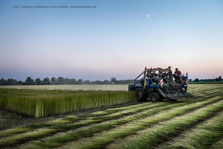 european flax production